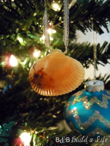 seashell ornaments @ BandBBuildALife.com