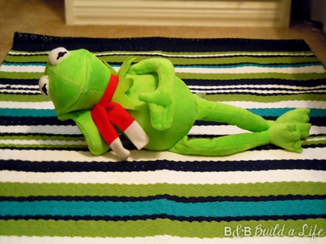 kermit the frog approves of the stripped rug @ BandBBuildALife.com
