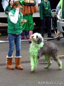 st Paddy's day parade @ BandBBuildALife.com