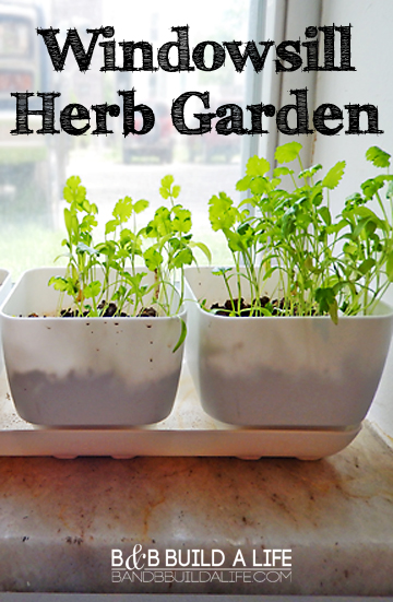 windowsil herb garden window @ BandBBuildALife.com