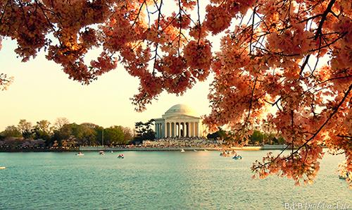 Passport to Our National Parks Washington DC @ BandBBuildALife.com
